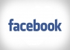 provide you with 30 Facebook PVA