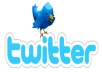 provide you with 1000 Twitter accounts