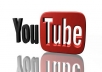 provide you with 100 YouTube PVA