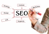 $ submit your website or blog link to over 3,000 high quality backlinks, directories and search engines  $