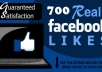 will Deliver 700 Likes To Any Of Your Status/Post/Photo Or Video On Facebook In Less Than 12 Hours