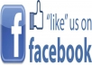 give you five hundred 100% real facebook likes