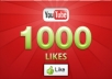 provide you  1000  plus  you tube &quot; likes or subscribers&quot; with in  72 hours ....