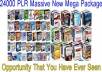 provide fresh  24000 PLR article