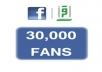 give 30,000+ facebook fans guaranteed(100% safe)