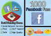 give you 1000 facebook fans in LESS than 24 hours to your fanpage
