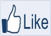 give you 50 real facebook, likes quickly