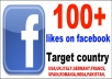 give you 130++ targeted USA,UK,SPAIN,ITALIAN,FRANCE,INDIA,GERMANY,ROMANIA,PAKISTAN,CANADA,TURKEY,VIETNAM,Italy,facebook likes for your facebook fan