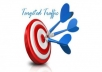 send 2000 real targeted visitors to your website or blog