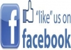 add 185+ real facebook likes and fans your fan page