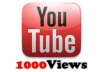 provide you 1000 real youtube views + 50 likes for only 3 days