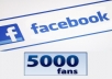 deliver 5,000 fans or followers in Facebook just