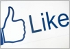 deliver 3,000+ Likes,Fans and bonus 1,000+ REAL facebook Followers to your Facebook profile for