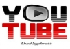 provide you 1000+ Real human youtube views + 50 likes + 50 favorites within 3 days