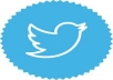 Give you 660+ Twitter Followers 100% Manually guarantee your page