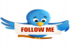 give you 1000+real twitter followers