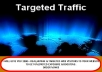 Give You 2000+ Real Human TARGETED Web Visitors To Your Site To Get Unlimited Exposure And Boosting