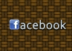 give you 15oo+ facebook likes,100% real and active user delivery witjin12 hours