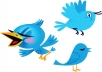 I will get 20000+ Twitter Followers for your Account Within 12 hours without password access for