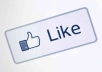 add 3000 REAL & PERMANENT Facebook LIKES or FANS To Your Fanpage or Website naturally in 30 days