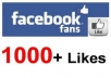 provide 1000 Real permanenet quality facebook likes