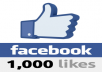 give you 1000+ Facebook Likes 100% real on your account