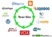 create powerful link wheels with 100 Web profiles and 1000 wiki links for