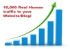 give you Real 10,000 Human Traffic to your website/blog