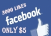 get you 3000 facebook likes on your fan page