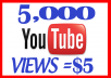 Send 5000 Natural High Retention Views to Your Youtube Video