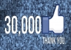 give you Good Qualitty 30200 + Faceboook Fanpage likes within 48 Hours