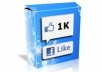 send 1300 USA HIGHQUALITY likes to your Facebook fan page in 13 hours