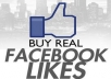 Give You 1,000+ Real And Active Facebok Likes / Fans