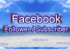 add 100 USA facebook subscribers/followers to your profile