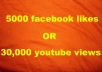 give 5000+ facebook likes to your page