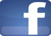 give you 1000 Facebook Likes for your Fan Page Guaranteed