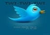 get you 555+ Twitters Followers 100% real & active on your account