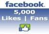 provide 5,000 real facebook likes