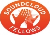 leave 1 detailed comment on each of your Soundcloud tracks and send you a detailed email on how to improve your sound for 