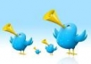 give you 1500+ twitter followers 100% real and active users only