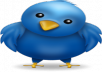 provide you 1001+ Twitters Followers 100% real on your website