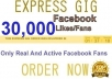 provide you 30000 GUARANTEED real &amp;active facebook fans likes Without Admin Access