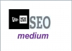 provide a new era SEO medium the most effective Anti Panda service ever