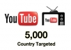 Provide Real YOUTUBE 100like +100subscriber within 12hrs only