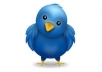 add 15,000 High Quality real looking permanent twitter followers to your twitter account in less than 2 days