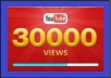 give you 30,000 youtube views to your youtube video, all views within 96 hours