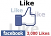 add you 3000 Real and verified Facebook likes to your Website or any link