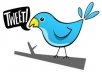 give you high quality 500+ twitter followers within 5 days