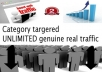 drive unlimited targeted real traffic to your website for one month