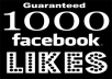 GIVE YOU 1000 FACEBOOK LIKE 100% QUALITY NO DROP ONLY